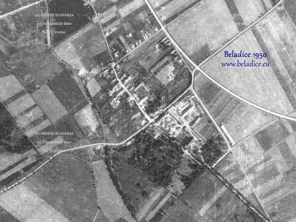 Beladice 1950